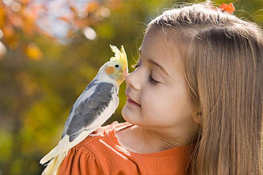 Kids & Pets (Детишки и домашние животные). Получила много удовольствия
