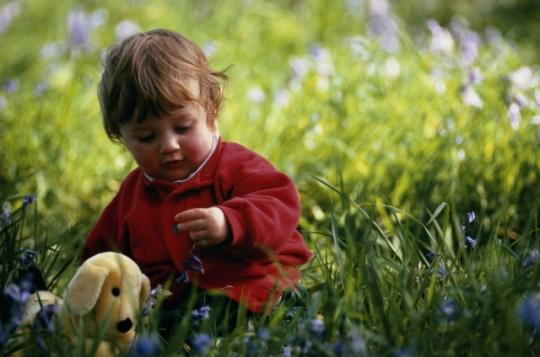 Осторожно: клещи! Как обезопасить ребенка летом?